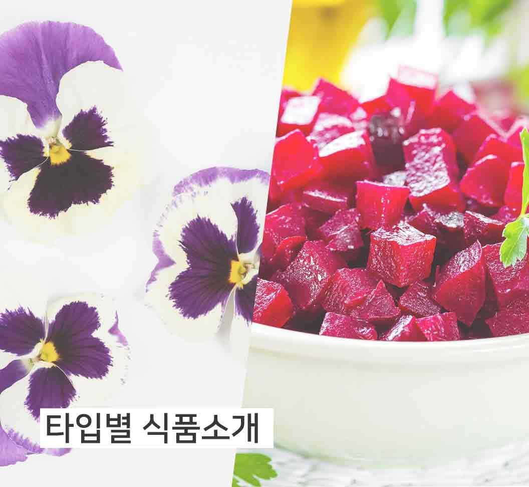 타입별식품소개